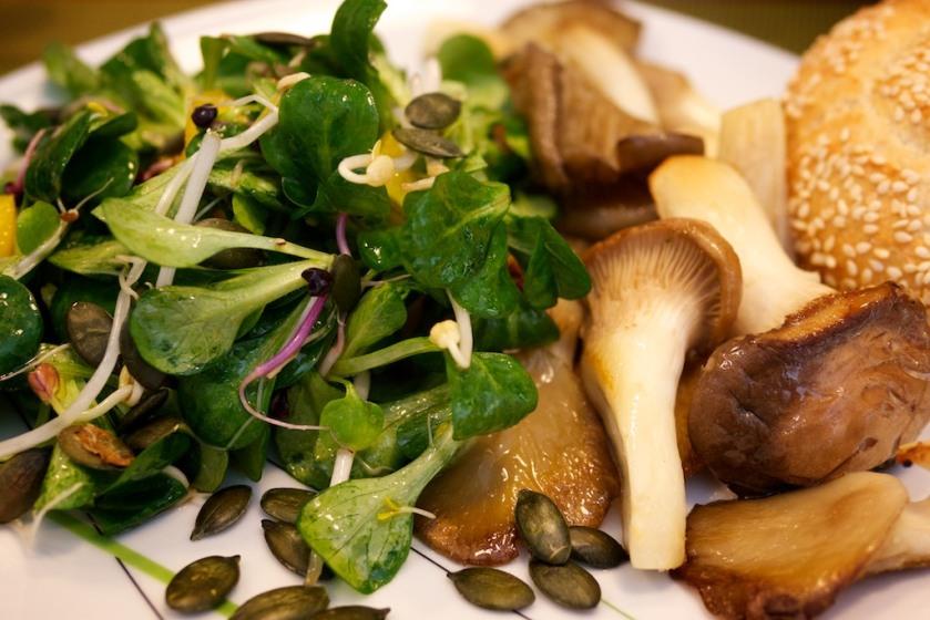 Feldsalat mit Sprossen und Austernpilzen