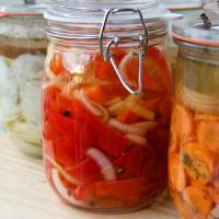Gemüse - milchsauer eingelegt